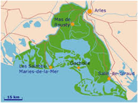 Blog la camargue bouches du rh ne villas exclusives for Info regionale bouche du rhone